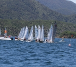 Race 4 in the Starlings - GO!