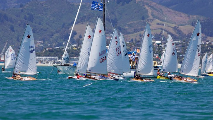 2020 Pic's Peanut Butter Starling National Championships @ Nelson Yacht Club Inc | Nelson | New Zealand